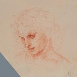 Il disegno di Leonardo
